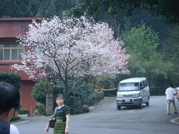 http://blog.nownews.com/allimage/dady812/0000333893_b.JPG