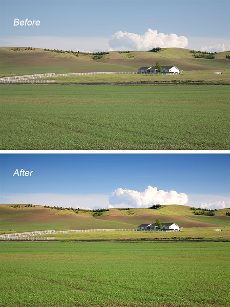 wheatfarm-before-after.jpg