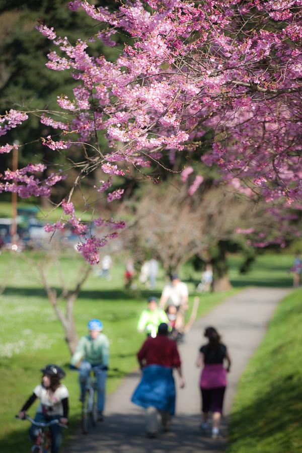 spring-003.jpg