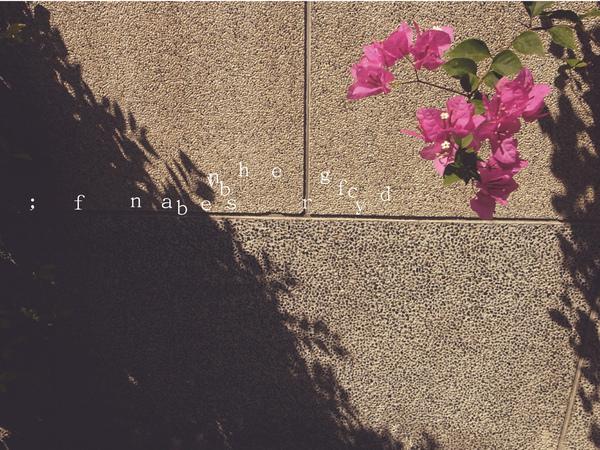 光影成詩5.jpg
