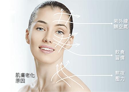 皮膚老化原因 .png