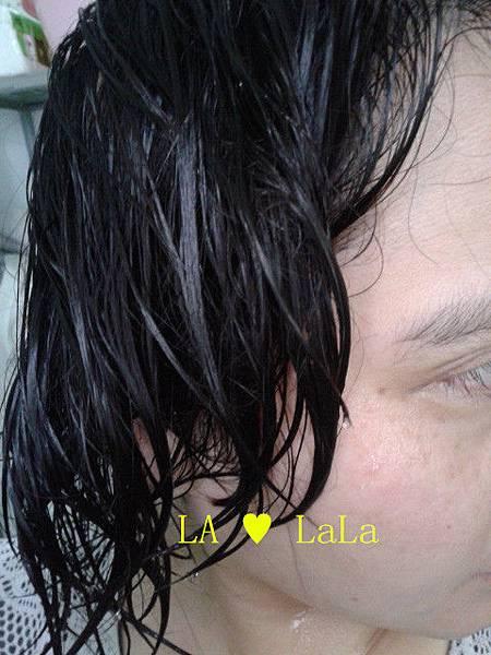 黛絲恩摩洛哥油極致修護洗髮精+髮膜12.jpg