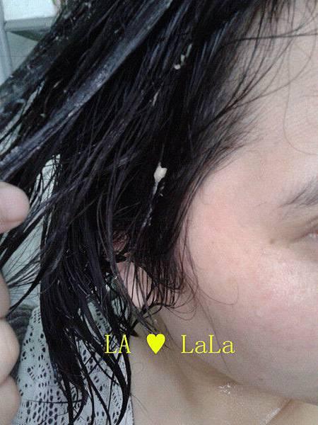 黛絲恩摩洛哥油極致修護洗髮精+髮膜13.jpg