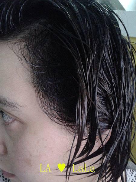 黛絲恩摩洛哥油極致修護洗髮精+髮膜14.jpg