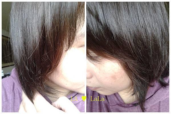黛絲恩摩洛哥油極致修護洗髮精+髮膜18.jpg