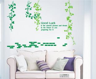 壁貼-常青藤