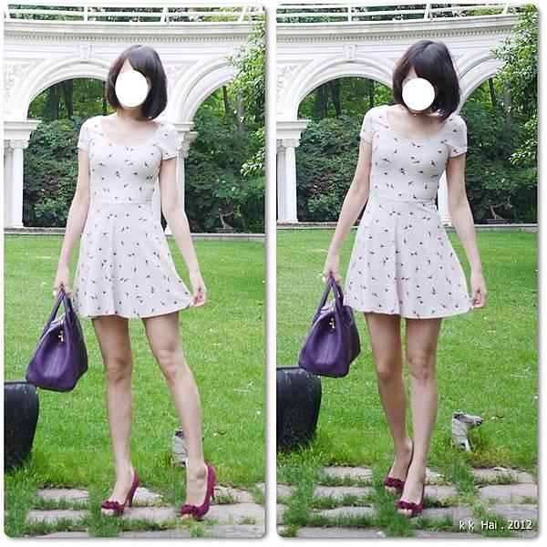 HM小紅鞋 (4)