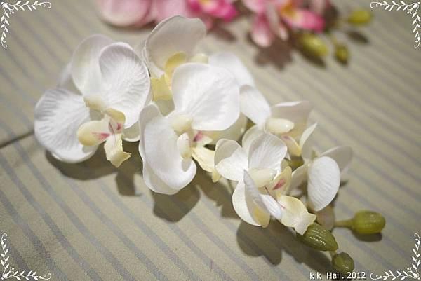 頭花 (3)