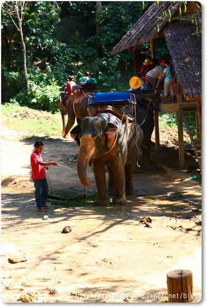 Phuket_d3 (51).JPG