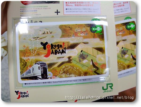 東京Day 1 (23).JPG