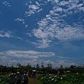 20050626_66.JPG