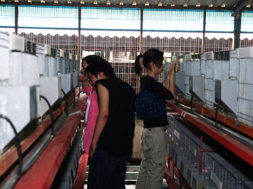 2004-9-1_09.JPG