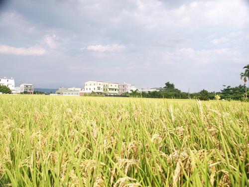 2004-9-1_45.JPG