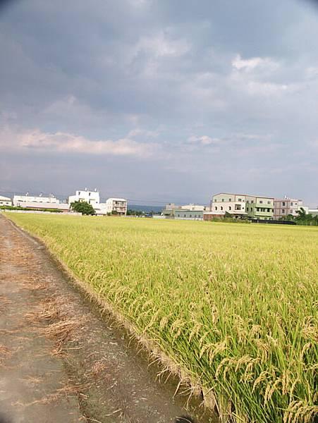 2004-9-1_49.JPG
