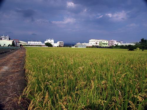 2004-9-1_42.JPG