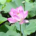 20050626_44.JPG