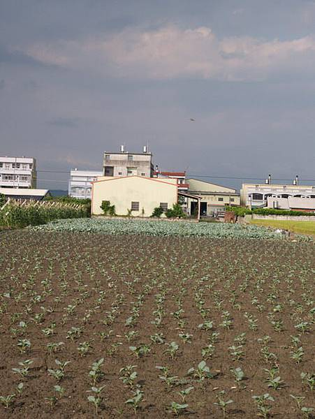 2004-9-1_53.JPG