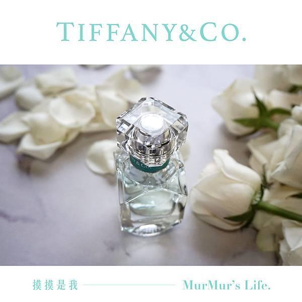 tiffany-00-01.jpg