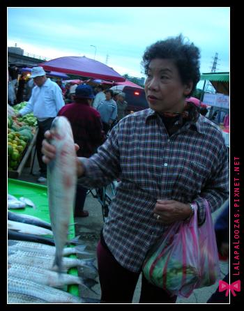 唱完歌的清晨我們去了福和橋下的菜市場