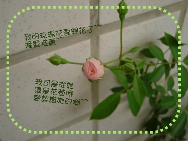 DSC00144小.jpg