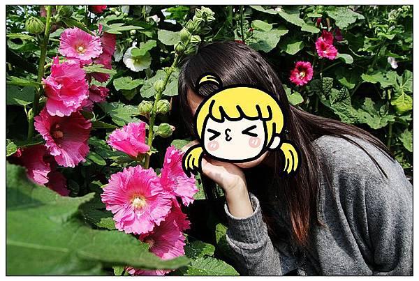 nEO_IMG_IMG_6174_副本