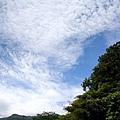 shin_shan_0001.JPG