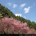 2011_wulin_II_0005.JPG