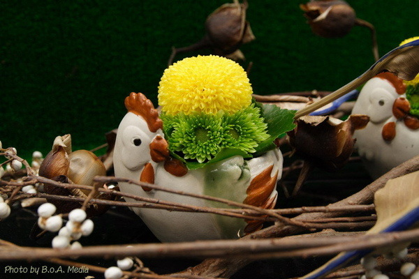 chrysanthemum_show144.JPG