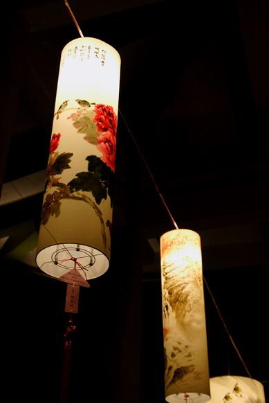 light_flower_show_0025.JPG