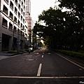 09_lotus_city0001.JPG