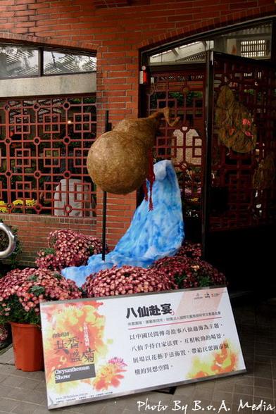09_chrysanthemum_0084.JPG