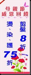 藍寶髮藝布旗_[1]