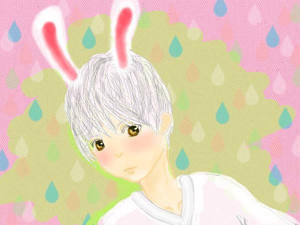 小七兔.jpg