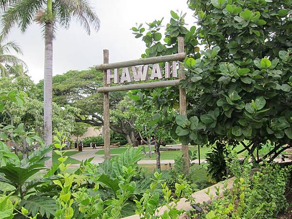 夏威夷 Hawaii (1)
