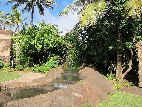夏威夷 Hawaii (8)