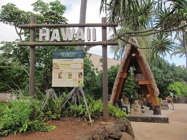夏威夷 Hawaii (12)