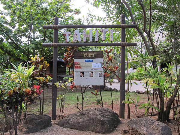 大溪地 Tahiti (23)