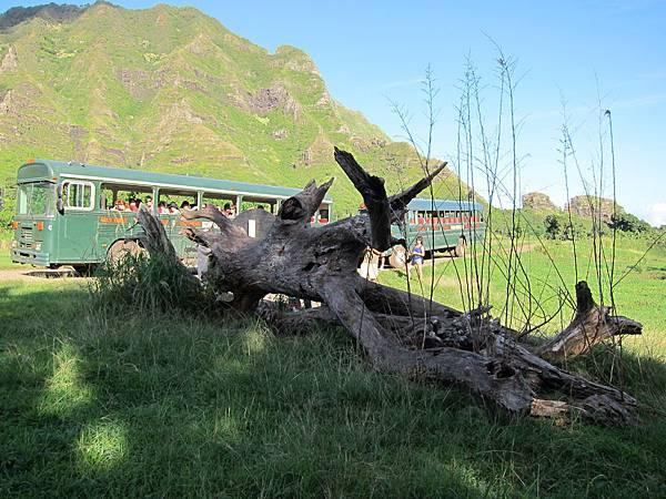 131212-1 Kualoa Ranch (24)