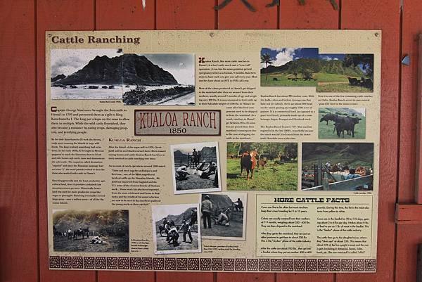 131212-1 Kualoa Ranch (70)