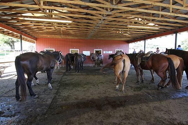131212-1 Kualoa Ranch (72)