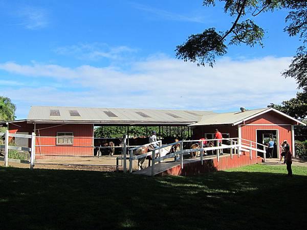 131212-1 Kualoa Ranch (108)