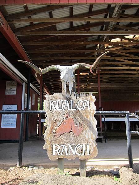 131212-1 Kualoa Ranch (132)