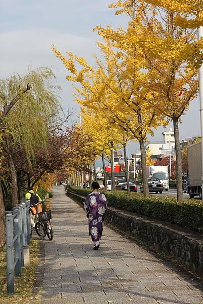 161117-2 京都漫步 (16)