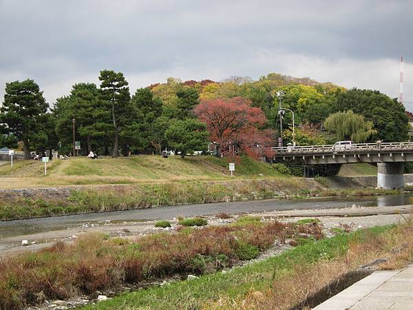 161117-6 下鴨神社 (2)