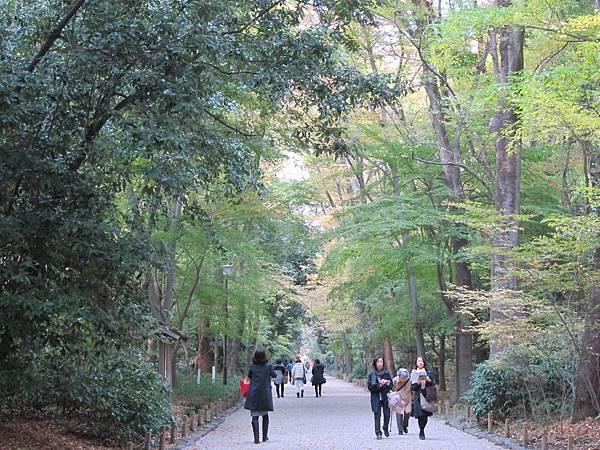 161117-6 下鴨神社 (12)