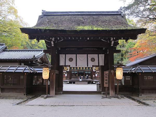 161117-6 下鴨神社 (16)