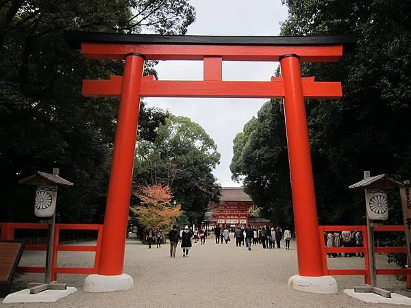 161117-6 下鴨神社 (19)
