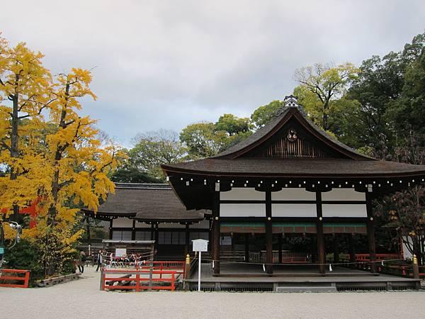 161117-6 下鴨神社 (24)