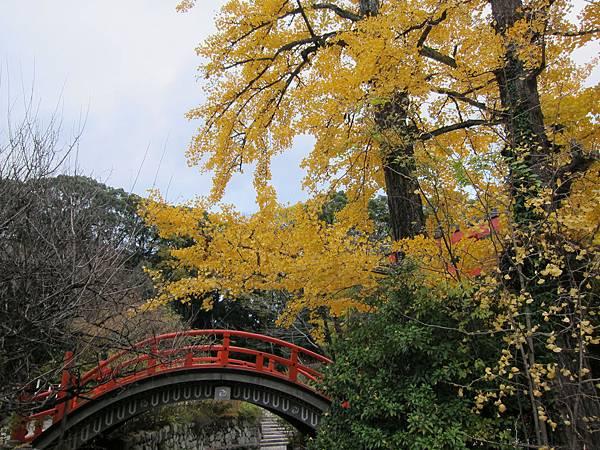 161117-6 下鴨神社 (25)