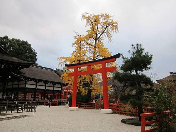 161117-6 下鴨神社 (26)